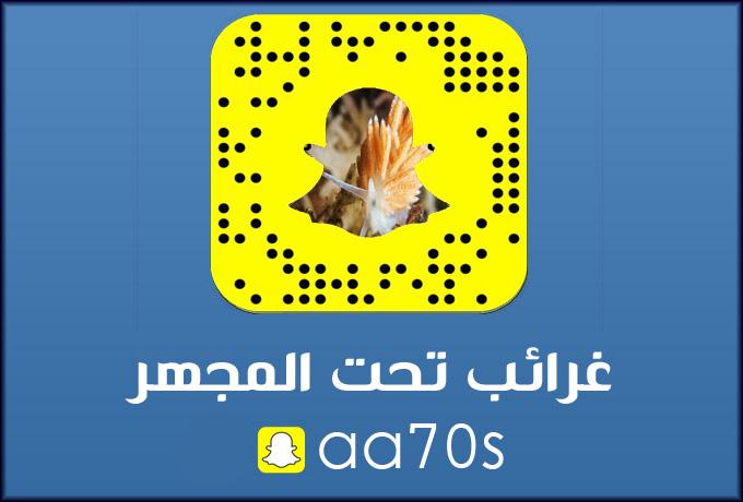 ....أبها...جنوب المملكة السعودية hafralbatin5c6765c330.jpg