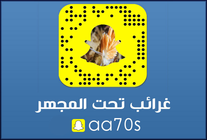 ....أبها...جنوب المملكة السعودية hafralbatin980ef19daf.jpg